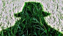The Grassman cometh.300 pix